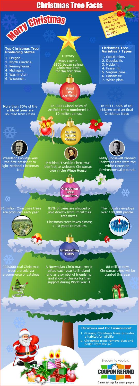 Feiten over de Kerstboom in een infographic